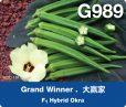 g989 rgb-01